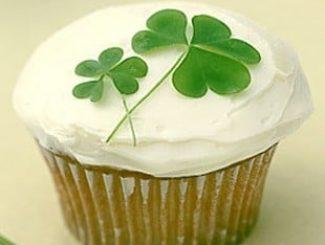 Sorteio: Kit Cupcake (fôrma, saco de confeitar, bico, forminha) 2