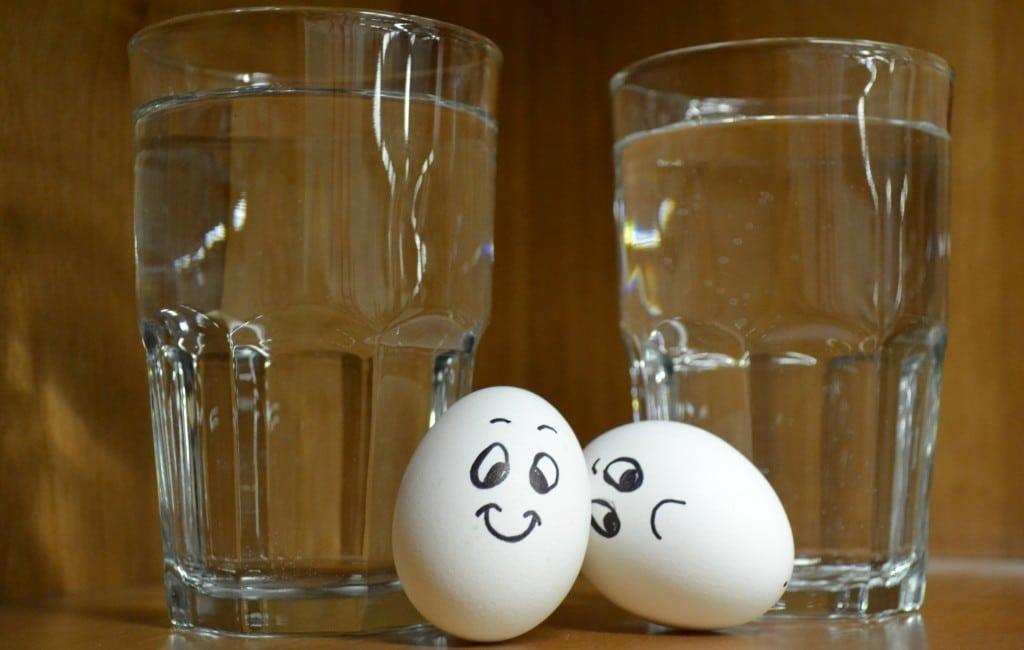 Como saber se os ovos estão bons?
