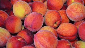 Torta de pêssego, maçã, pera, banana ou do que você tiver aí... 2