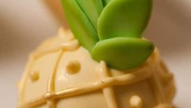Cake pops (ou popcakes) 18
